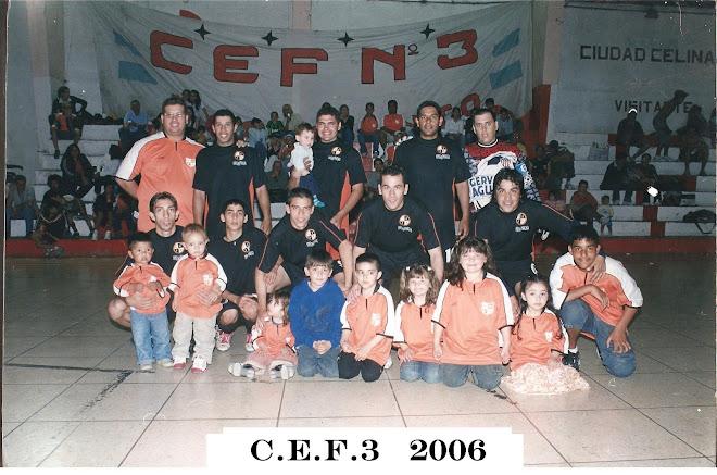 liga metropolitana 2006