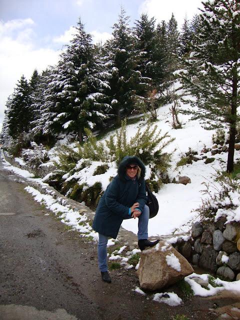 Tomando sol en la terraza de buenos aires noviembre 2009 for Terrazas 5 bariloche