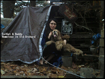 EelKat & Buddy: Homeless in Old Orchard Beach, Maine