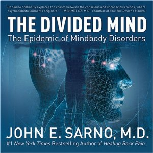 dr sarno book review