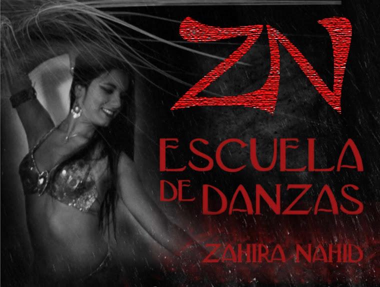 ESCUELA DE DANZAS ZAHIRA NAHID