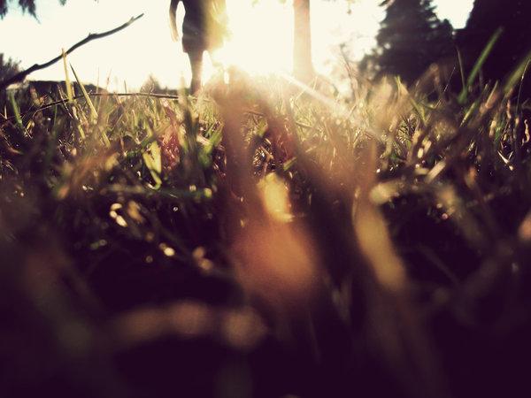 მზე და მე