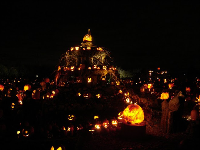 Jack-o-lanterns, in all their glory