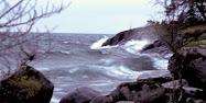 Stöd Vätterns Fiskevårdsfond