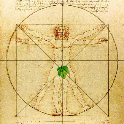 vitruvian man censored image search results