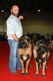 Algumas fotos dos meus cães em exposições e no canil Fotos acualizadas em 28/10/2009