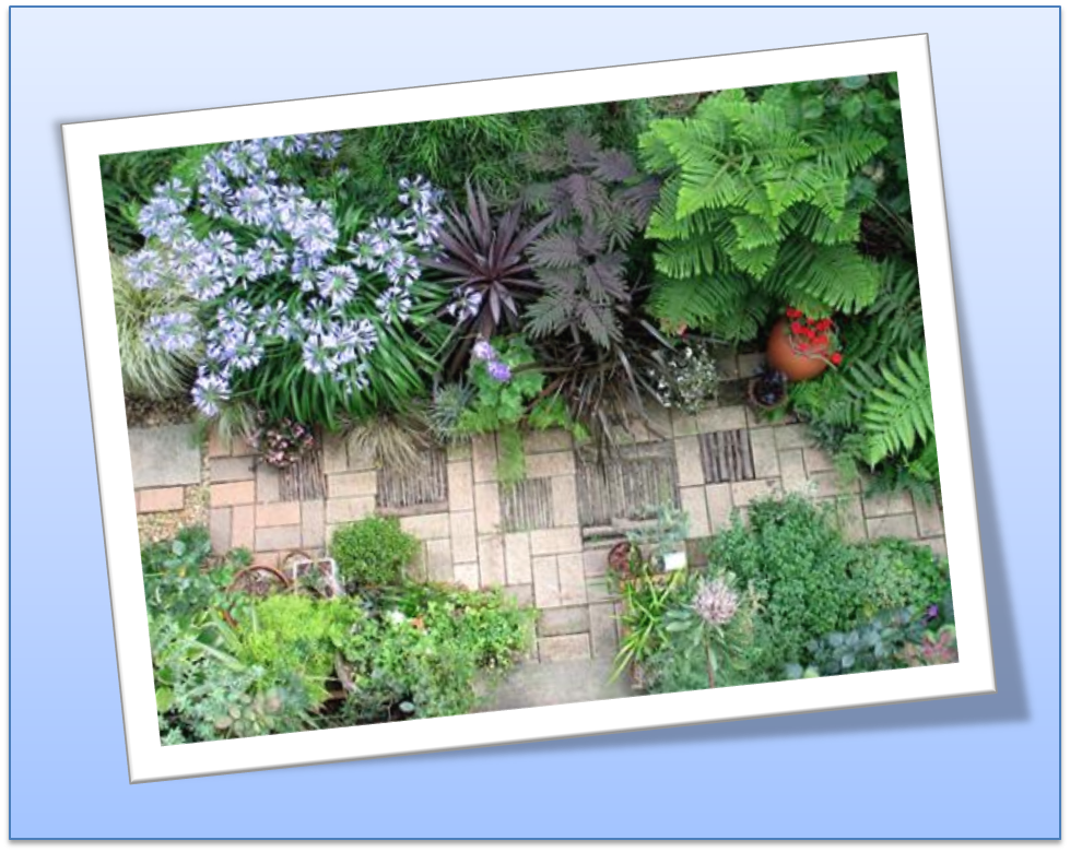 Crea y cuida tu jardin for Crea tu jardin