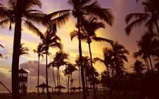 Cote d'Ivorie beach