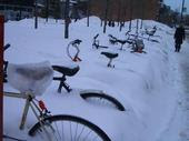 rad bikes Montreal winter snow