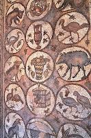 Mosaics at Petra Church