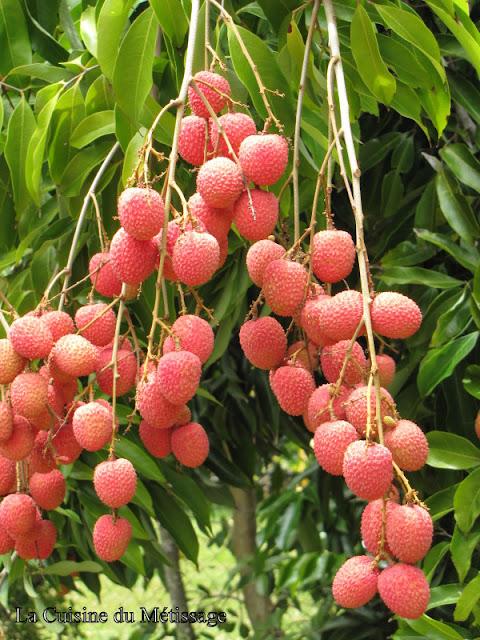 letchis Réunion