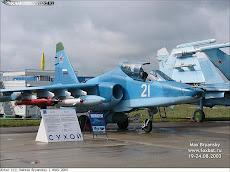 Sukhoi Su-39 (Su-25TM) NAVAL.a