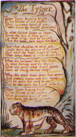 "a comprison of the lamb and the tygre a poems by william blake In contrast, blake's poem entitled ""the tyger"" is questioning why the god who  made the gentle lamb would also make such a ferocious creature as the tyger."