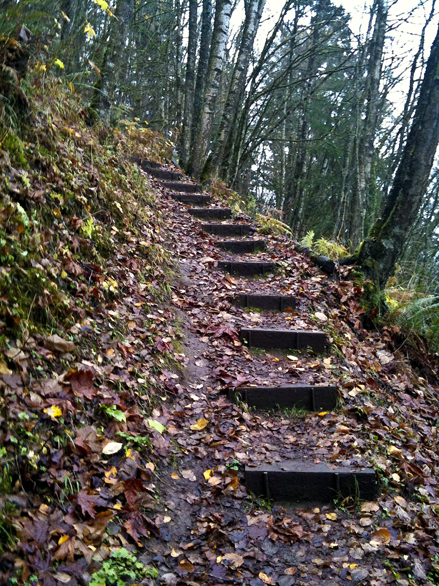 Chilliwack Stairs