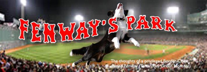 Fenway's Park