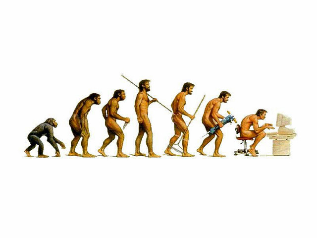 evolution of a developer