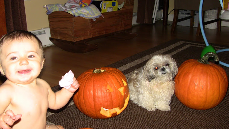 Lilly and Twiggy with their Pumpkins