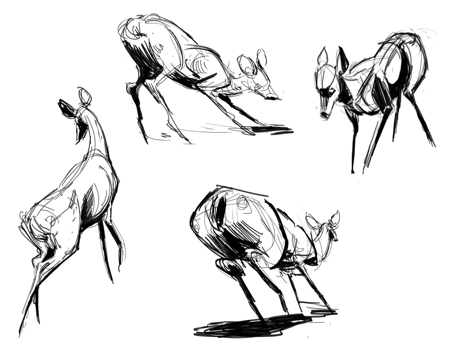Martin Wittig: Deer Sketches --Finally New Art RIGHT???!!