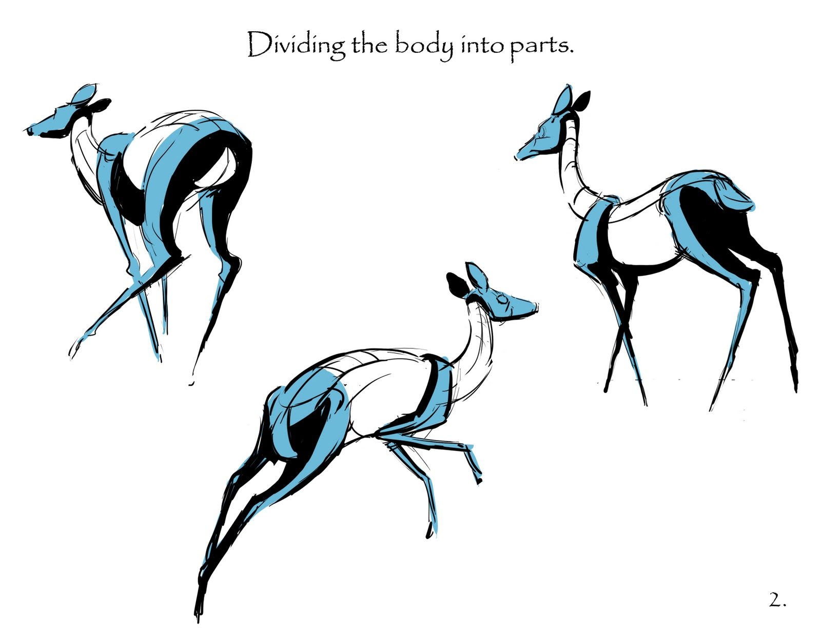 how to draw a deer head step by step easy