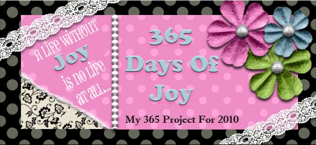 365 Days of Joy