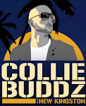!!! COLLIE BUDZ + DR.BIRD MEDLEY RMXX !!! DOWNLOAD IT !!!