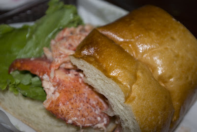 Panera Lobster Sandwich (photo by mydailyphotoshoot.com)