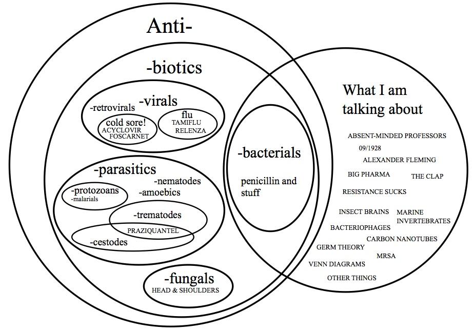 Protist Bacteria Virus Venn Diagram Diagram Protist Bacteria Virus