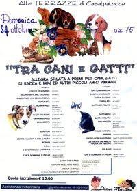ROMA - domenica 24 ottobre · 15.00 - 19.00