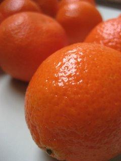 Clementine Ice (Granita)