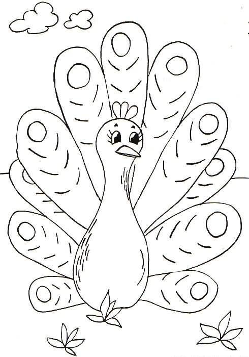para pintar dibujos de animales para colorear dibujos en blanco y ...
