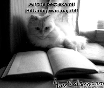 all the best quotes for exams. 2011 funny quotes on exams.