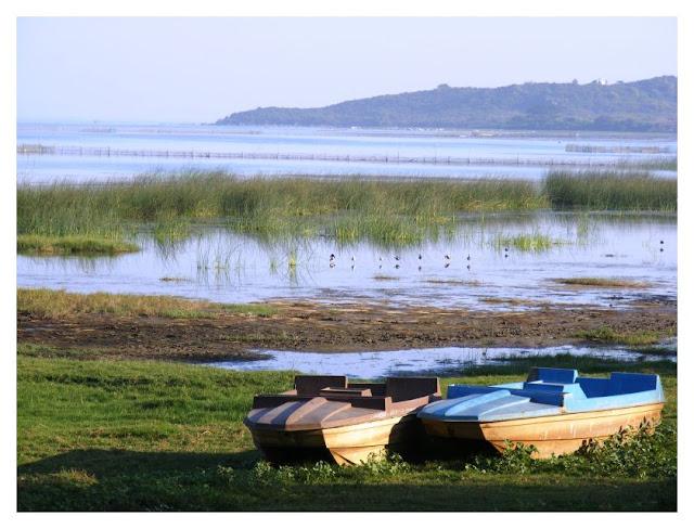 Chilka Lake from Panthanivas, Barkul. Barkul is ~70 Km from Behrampur (now Brahmapur).