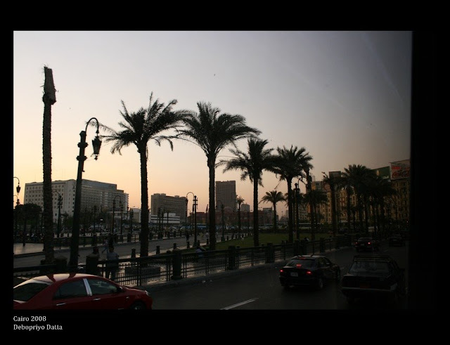 the palm tree lined roads leading to Tahrir Square.