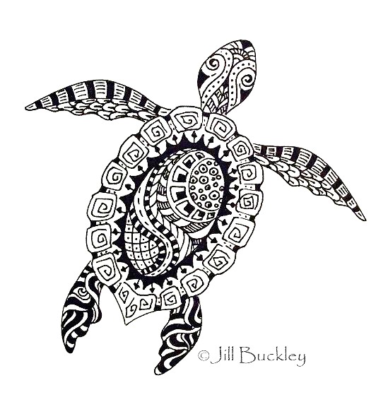 Great Fondness For Turtles First I Did This Doodle