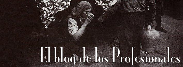 El blog de los Profesionales