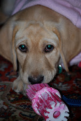 Sabrina in Pink!
