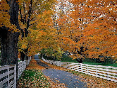 fall wallpaper pictures. Beautiful fall wallpaper