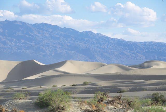 Sand Dunes 8