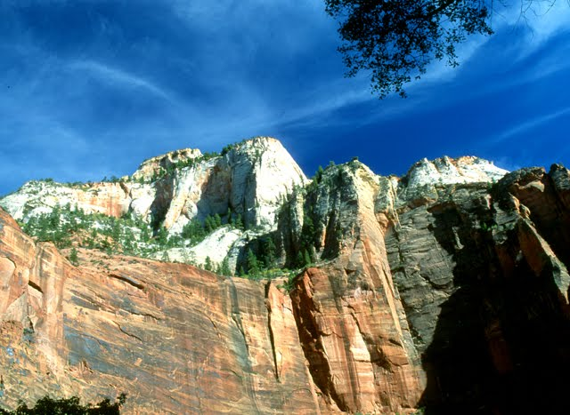 Zion National Park  20