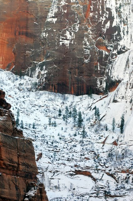Winter snow in canyon