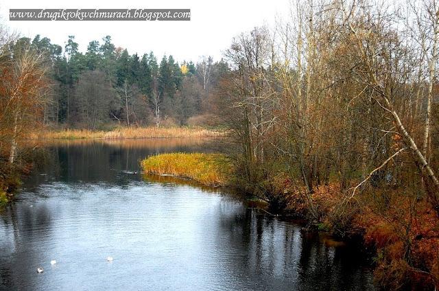 Barkweda. Jezioro Mosąg