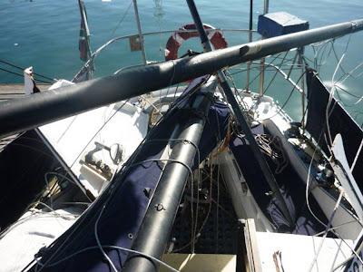 ballena destroza velero