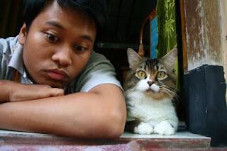 orang mirip kucing