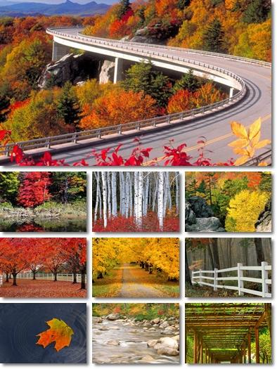 emilie autumn wallpaper. emilie autumn wallpaper. /Emilie-Autumn-Wallpaper-2