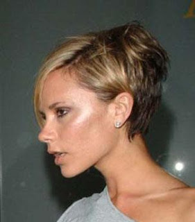 Victoria Beckham Hairstyle Picture 2