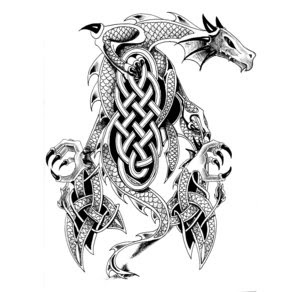 Designs Tattoo With Image Celtic Dragon Tattoo Designs