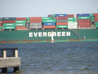 See the people standing on the sailboat, yielding to the HUGE container ship?! It was gigantic!