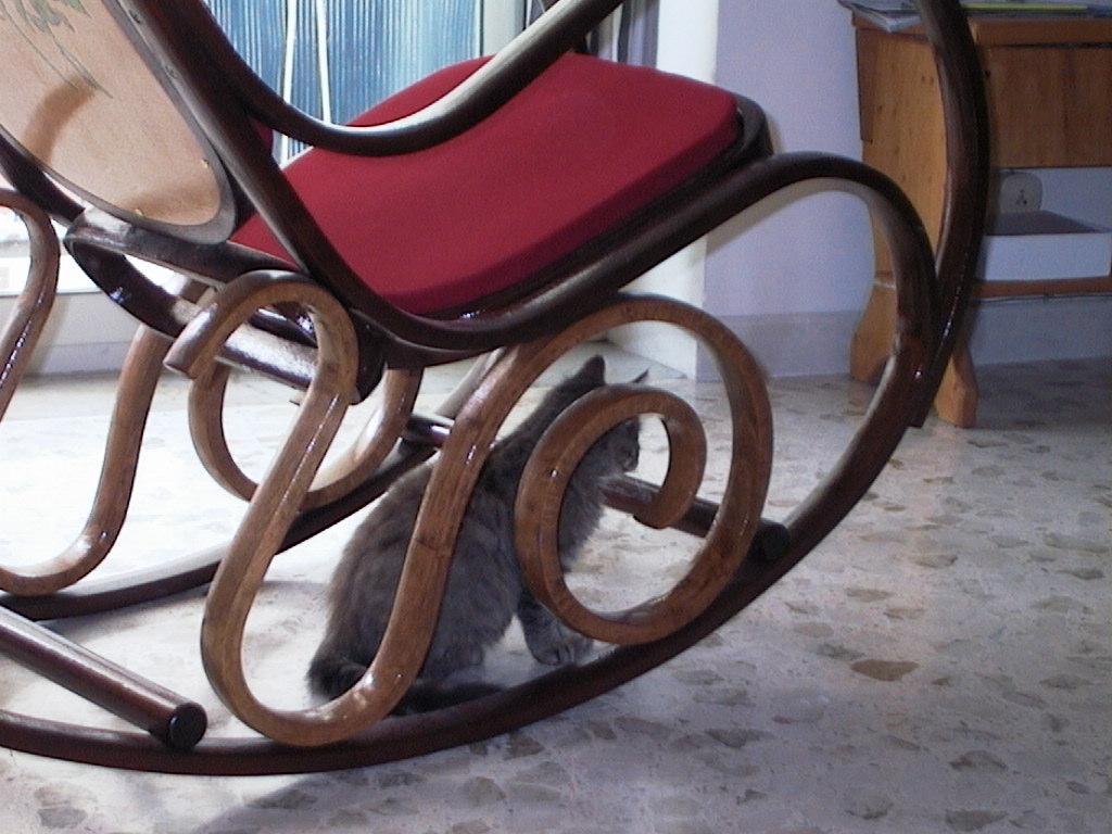 I miei solchi - La sedia a dondolo ...