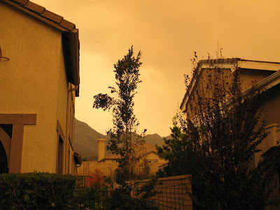 Our brush cherry tree in our front yard with half of the trunk sheared off with smoke in the background from Malibu and Santa Rosa fires