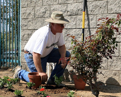 I love this shot of my dad as he's planting at my sister's house in preparation for her baby shower.